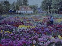 "022  TULIP FARM – THE NETHERLANDS ACRYLIC ON CANVAS 24""  X 36"" IN A PRIVATE COLLECTION – PALM SPRINGS, CALIFORNIA"